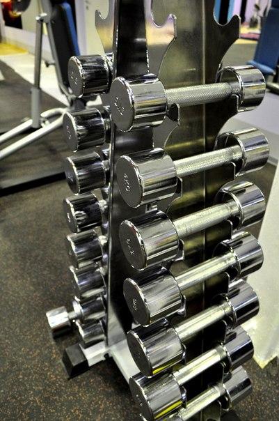 Вы просматриваете изображения у материала: Алекс фитнес - фитнес-клуб